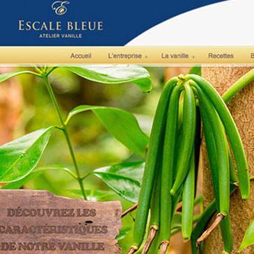 Escale Bleue Vanille de hautes qualité à la Réunion